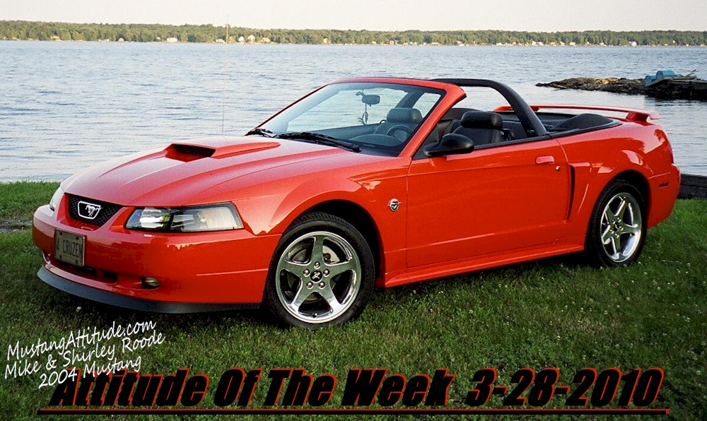 used ford mustang for sale wisconsin cargurus autos post. Black Bedroom Furniture Sets. Home Design Ideas